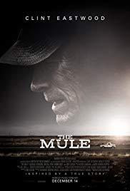 The_mule